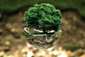 nachhaltige investitionen was würde greta wohl dazu sagen