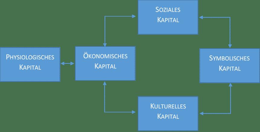 Konzept der Kapitalkonvertierung